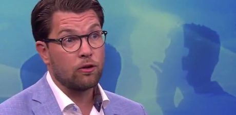 Far Right Sweden Democrats Vow to Exert 'Real Influence' after Some Election Gains