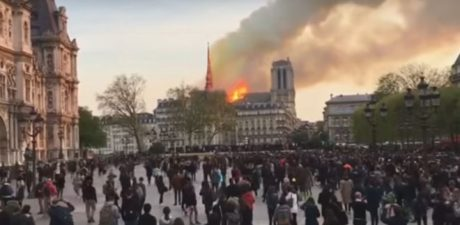 From the Notre-Dame Fire to Italy's 'Bone-Breaking' Scam: EU's Top Stories from April 15, 2019, Ranked