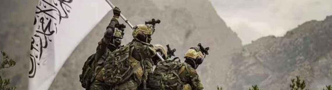 How West Picks Wrong Allies: Taliban Got Armed to the Teeth as Many NATO, EU States Are Defenseless
