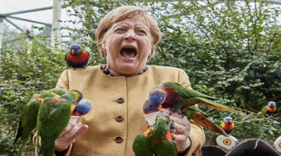 Parakeet Scream after 16 years: Merkel Has Disappointed Even as EU Owes Her Tons of Gratitude