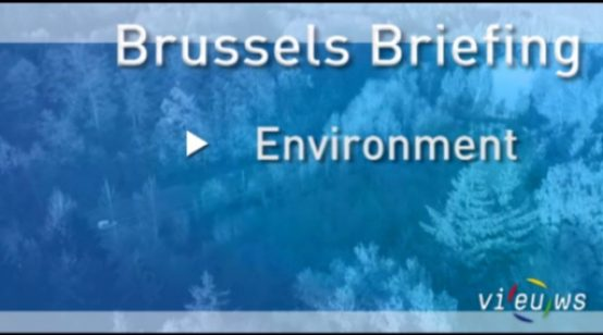Brussels Briefing Environment – October 2012