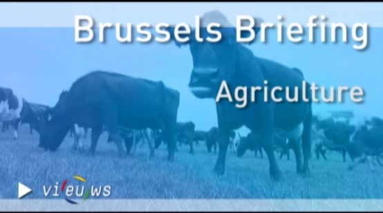 Brussels Briefing on Agriculture – November 2012