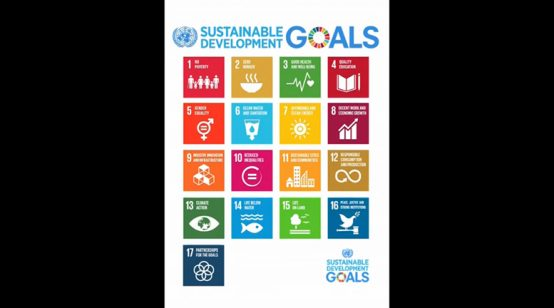 United Nations: Adoption of the Sustainable Development Goals