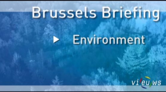 Brussels Briefing Environment – November 2012