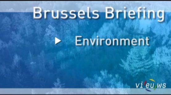 Brussels Briefing Environment – November 2012