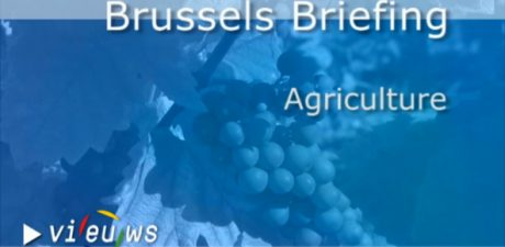 Brussels Briefing on Agriculture – All you need to know for the month of September 2013