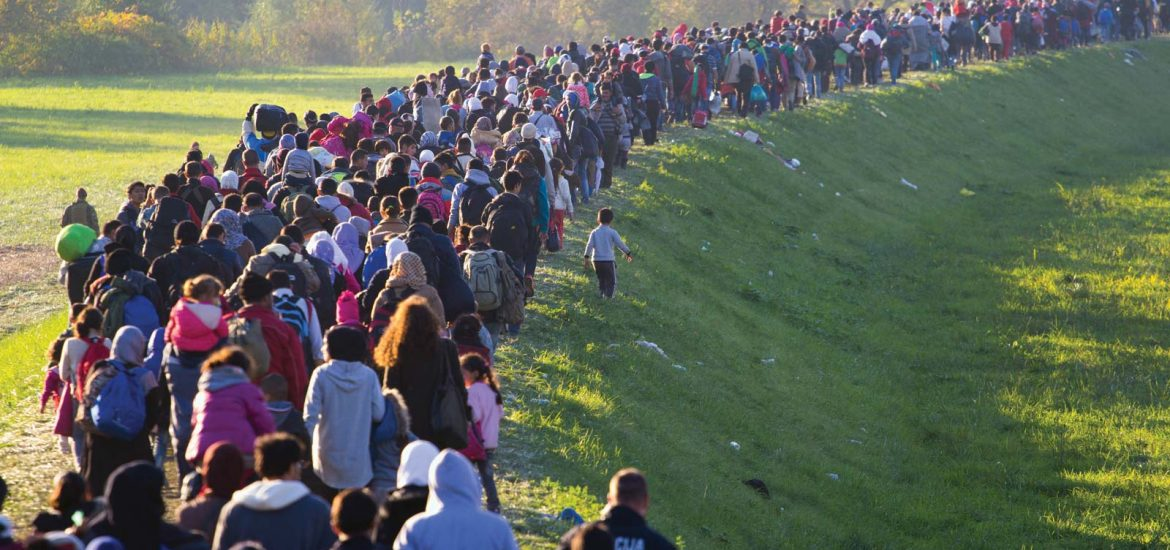 Number of Asylum Seekers Decreases Significantly